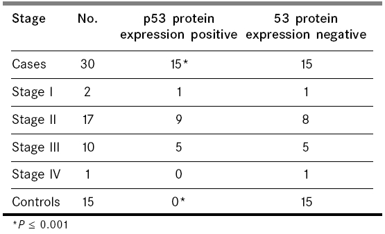 Analysis of p53 protein expression