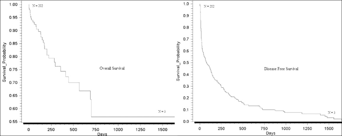 Figure 1: Kaplan-Meier survival curve showing overall and disease-free survival (N = 202)