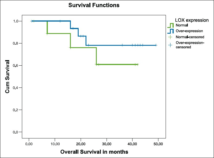 Figure 4: Kaplan-Meier survival curve for overall survival in breast cancer patients with normal (n = 20, green line) and over-expression (n = 37, blue line) of 12-lipo-oxygenase (P 0.17)