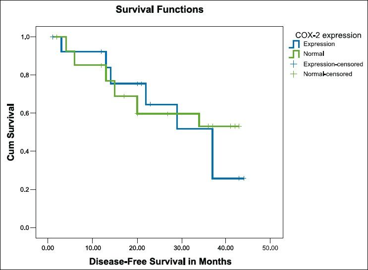 Figure 5: Kaplan-Meier survival curve for disease-free survival in breast cancer patients with normal (n = 29, green line) and overexpression (n = 28, blue line) of cyclo-oxygenase-2 (P 0.67)