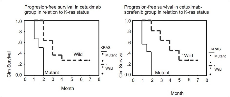 Figure 2 :Progression-free survival in relation to K-ras status in both treatment groups