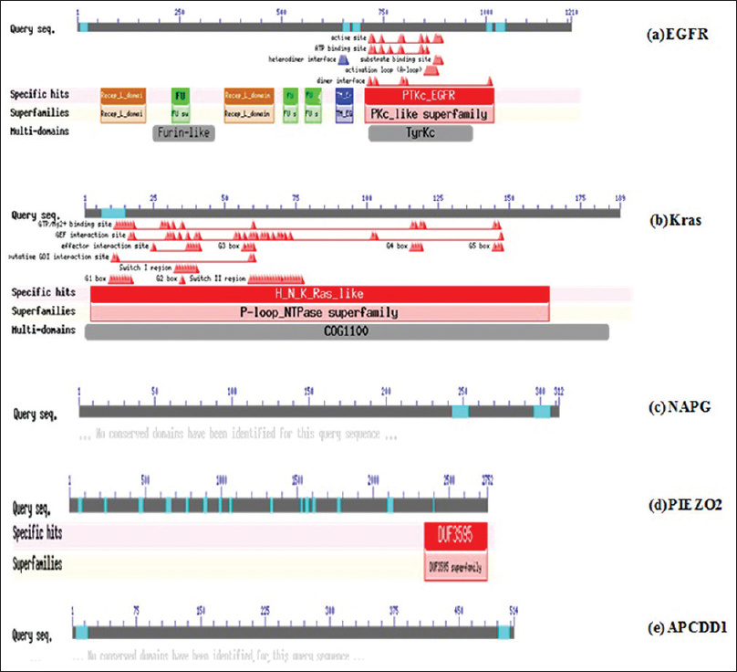 Figure 2: NCBI conserved domains search for all the five important genes reviewed