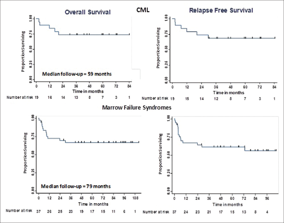 Figure 12: OS and RFS of patients undergoing allogeneic transplants for CML and marrow failure syndromes